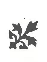 DMS-symbol